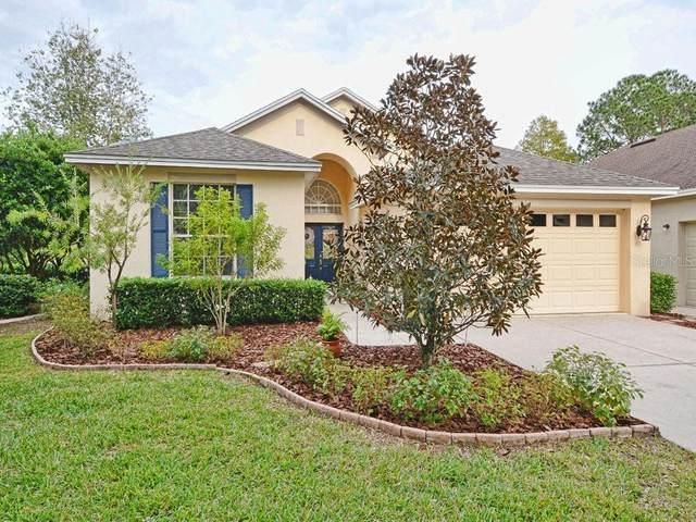 8035 Arcadian Court, Mount Dora, FL 32757 (MLS #G5036289) :: Griffin Group