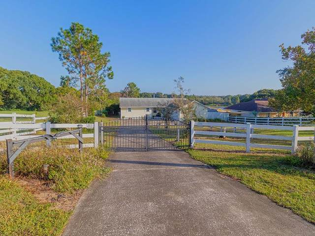 9411 Lakeshore Drive, Clermont, FL 34711 (MLS #G5036325) :: Rabell Realty Group