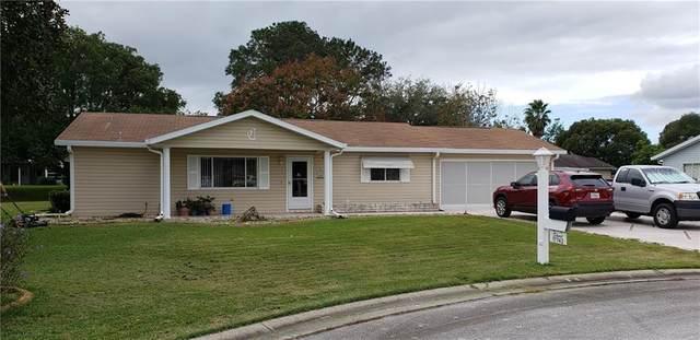 17742 SE 106TH Terrace, Summerfield, FL 34491 (MLS #G5036364) :: Bridge Realty Group