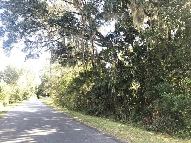 3RD Avenue, Clermont, FL 34715 (MLS #G5036544) :: Lockhart & Walseth Team, Realtors