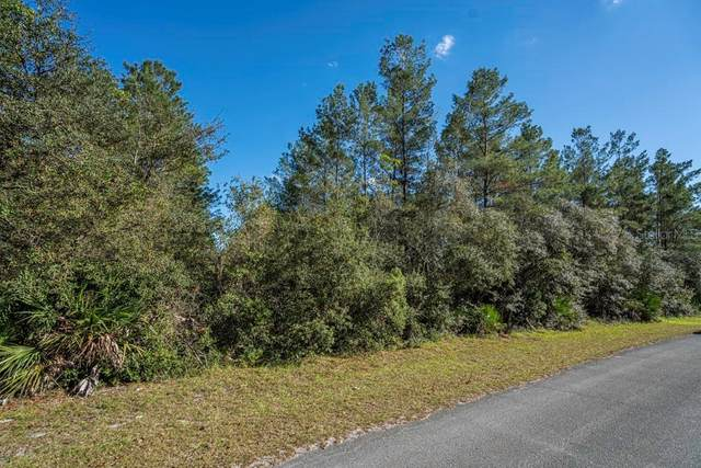 Johnson Road, Paisley, FL 32767 (MLS #G5037086) :: Griffin Group