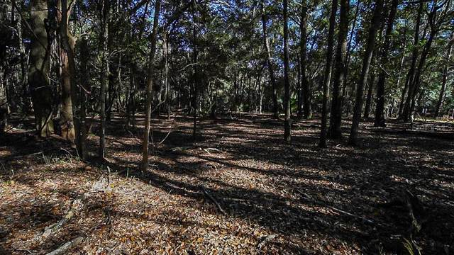 County Road 42, Paisley, FL 32767 (MLS #G5037090) :: Baird Realty Group