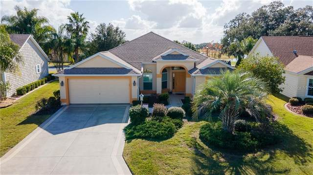 1250 James Island Street, The Villages, FL 32162 (MLS #G5037223) :: Everlane Realty