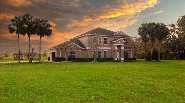 28520 State Road 46, Sorrento, FL 32776 (MLS #G5037275) :: Visionary Properties Inc