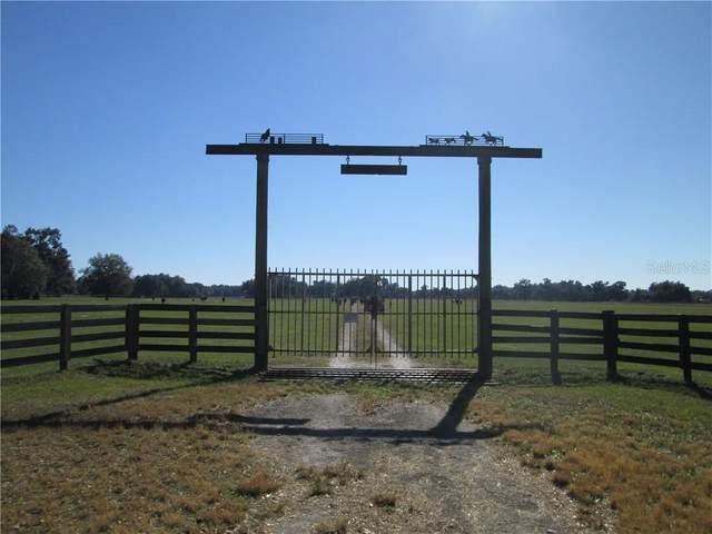 County Road 707, Webster, FL 33597 (MLS #G5037356) :: Griffin Group