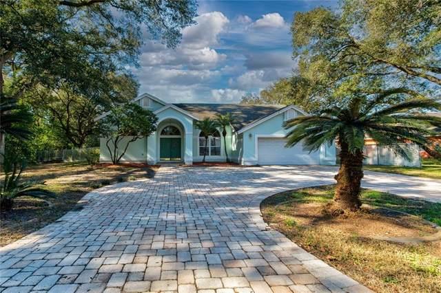 31623 6TH Street, Sorrento, FL 32776 (MLS #G5037385) :: Visionary Properties Inc