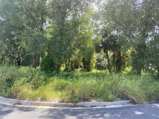Fearon Avenue, Mount Dora, FL 32757 (MLS #G5037396) :: Griffin Group
