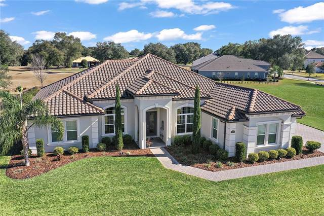 25867 Crossings Bluff Lane, Sorrento, FL 32776 (MLS #G5037464) :: Visionary Properties Inc