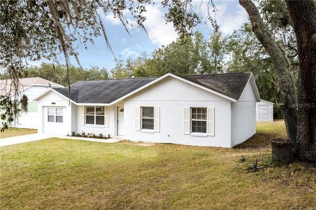 40049 Palm Street, Lady Lake, FL 32159 (MLS #G5037559) :: Young Real Estate