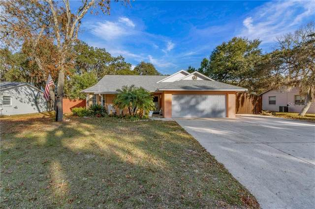 606 Cricket Hollow Lane, Eustis, FL 32726 (MLS #G5037635) :: The Light Team