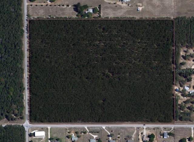County Road 44A, Eustis, FL 32736 (MLS #G5037644) :: Team Buky
