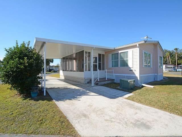 21 Trout Lake Drive, Eustis, FL 32726 (MLS #G5037791) :: Visionary Properties Inc