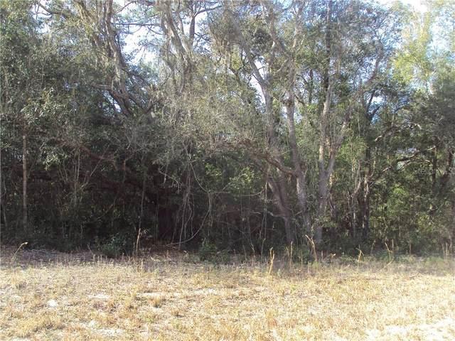 Larry Avenue, Webster, FL 33597 (MLS #G5037810) :: Everlane Realty