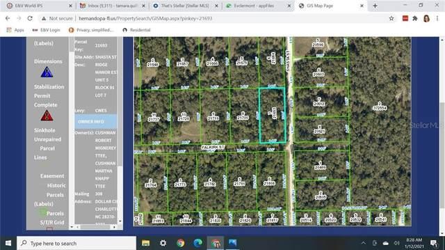 8385 Shasta Street, Webster, FL 33597 (MLS #G5037953) :: Godwin Realty Group