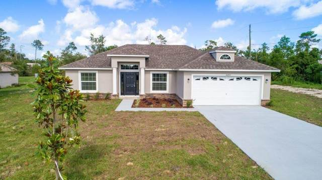 40307 West 1St Avenue, Umatilla, FL 32784 (MLS #G5037955) :: Team Buky