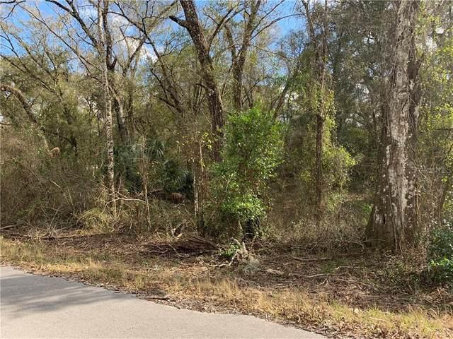 Long Circle, Webster, FL 33597 (MLS #G5038062) :: EXIT King Realty