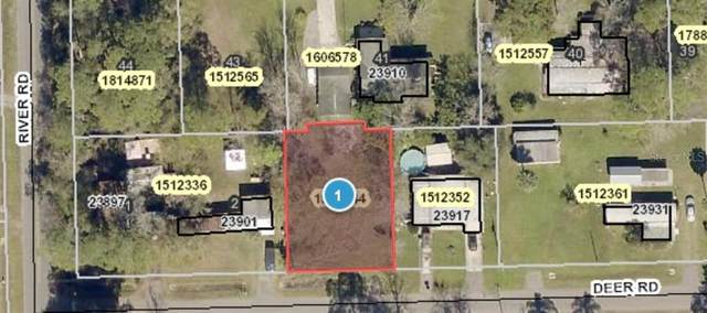 Deer Rd, Astor, FL 32102 (MLS #G5038224) :: Sarasota Property Group at NextHome Excellence