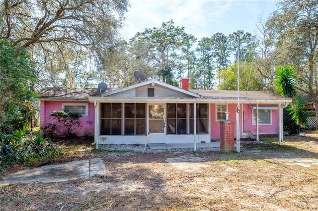 42331 Maggie Jones Road, Paisley, FL 32767 (MLS #G5038372) :: The Duncan Duo Team