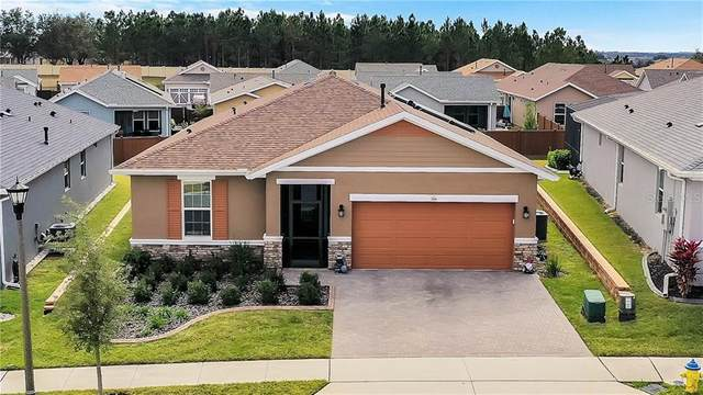 544 Narrow View Lane, Groveland, FL 34736 (MLS #G5038448) :: Bob Paulson with Vylla Home