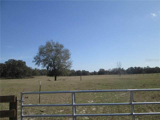 County Road 721, Webster, FL 33597 (MLS #G5038518) :: Team Borham at Keller Williams Realty