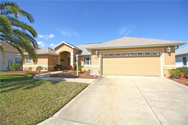 17392 SE 116TH COURT Road, Summerfield, FL 34491 (MLS #G5038598) :: The Heidi Schrock Team