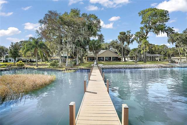 890 Harbor Terrace Rd, Tavares, FL 32778 (MLS #G5038723) :: Bridge Realty Group