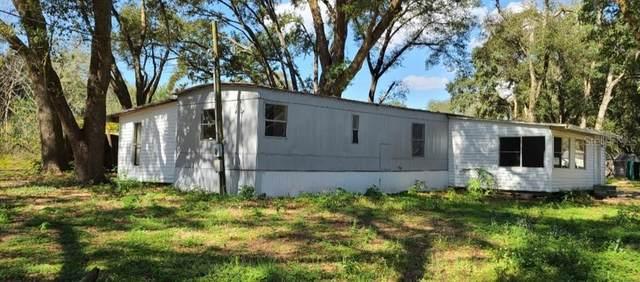 15930 SE 258TH AVENUE Road, Umatilla, FL 32784 (MLS #G5038910) :: The Light Team