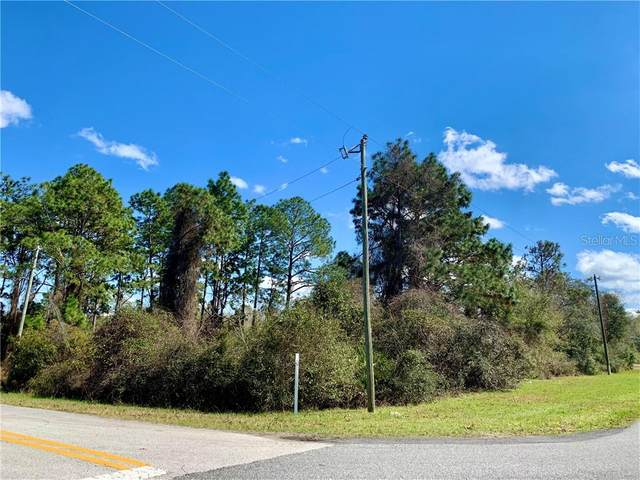 Vitex Avenue, Eustis, FL 32736 (MLS #G5038982) :: Delta Realty, Int'l.