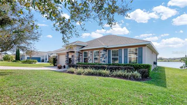 11244 Little Nellie Drive, Clermont, FL 34711 (MLS #G5039118) :: Realty One Group Skyline / The Rose Team