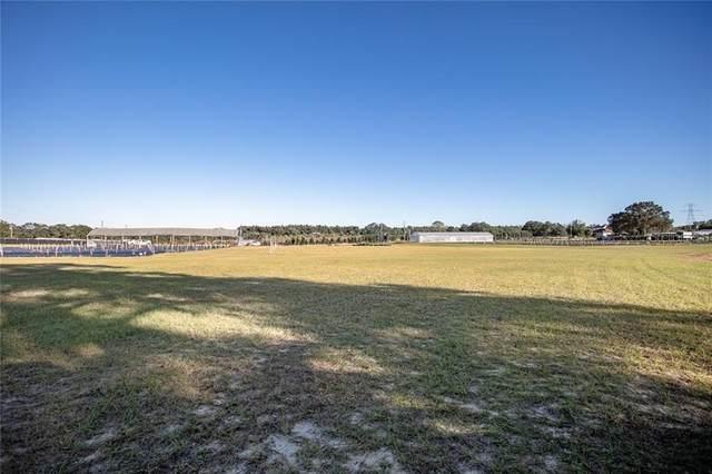 17652 Sandhill Road, Winter Garden, FL 34787 (MLS #G5039156) :: Delta Realty, Int'l.