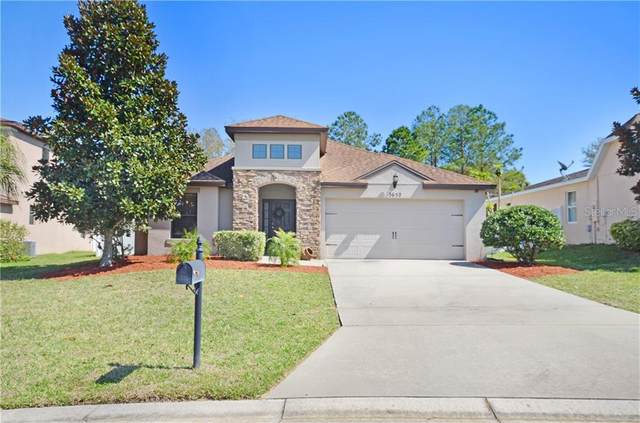 3652 Briar Run Drive, Clermont, FL 34711 (MLS #G5039171) :: CGY Realty