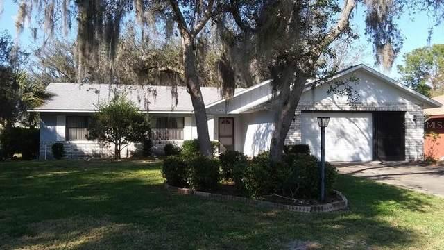 12401 N Putney Court, Leesburg, FL 34788 (MLS #G5039218) :: Delgado Home Team at Keller Williams