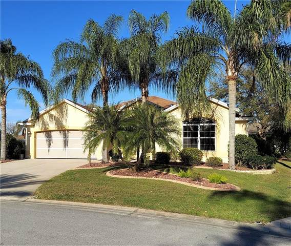 905 Talapia Loop, The Villages, FL 32162 (MLS #G5039233) :: Positive Edge Real Estate