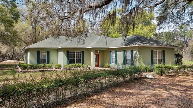 23321 N Buckhill Road, Howey in the Hills, FL 34737 (MLS #G5039251) :: Premium Properties Real Estate Services