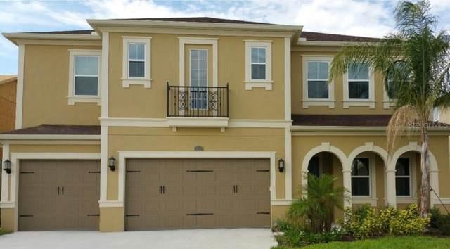 32139 Firemoss Lane, Wesley Chapel, FL 33543 (MLS #G5039262) :: Griffin Group