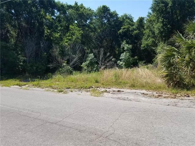 Griffin View Drive, Lady Lake, FL 32159 (MLS #G5039323) :: Pepine Realty