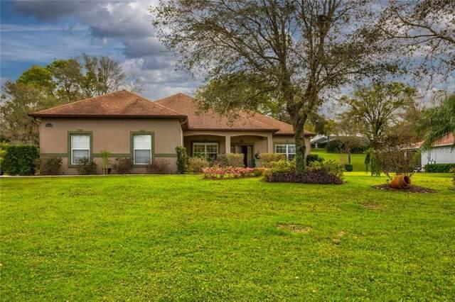 3930 Oak Pointe Drive, Lady Lake, FL 32159 (MLS #G5039331) :: Positive Edge Real Estate