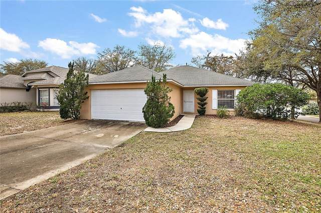 33349 Kaylee Way, Leesburg, FL 34788 (MLS #G5039380) :: Visionary Properties Inc