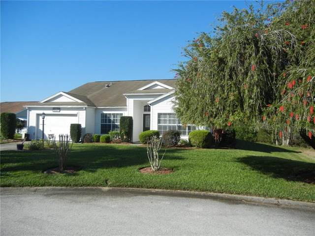 25335 Hibiscus Street, Leesburg, FL 34748 (MLS #G5039447) :: Team Borham at Keller Williams Realty