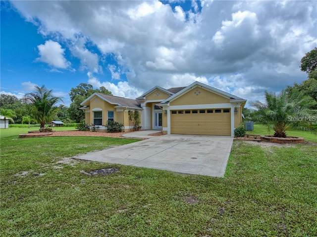 11119 NW 20TH Drive, Oxford, FL 34484 (MLS #G5039476) :: Gate Arty & the Group - Keller Williams Realty Smart