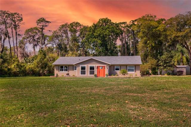 895 Shore Acres Road, Mount Dora, FL 32757 (MLS #G5039510) :: Coldwell Banker Vanguard Realty