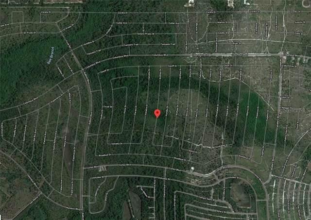 6421 Anthea Drive, Sebring, FL 33872 (MLS #G5039642) :: Armel Real Estate