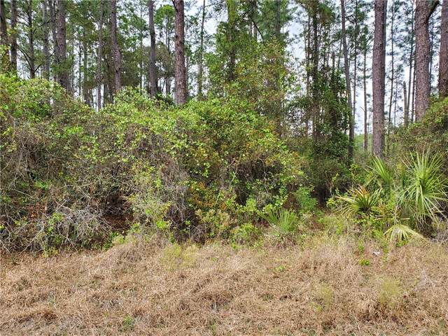 Lot 12 Nutmeg Avenue, Eustis, FL 32736 (MLS #G5040023) :: Armel Real Estate