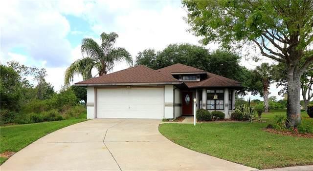 21501 King Henry Avenue, Leesburg, FL 34748 (MLS #G5040260) :: Florida Real Estate Sellers at Keller Williams Realty