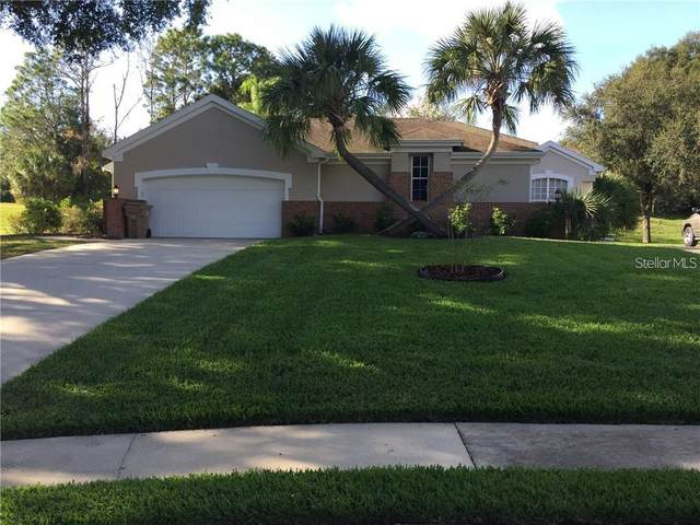 39901 Bayview Drive, Lady Lake, FL 32159 (MLS #G5040278) :: Vacasa Real Estate