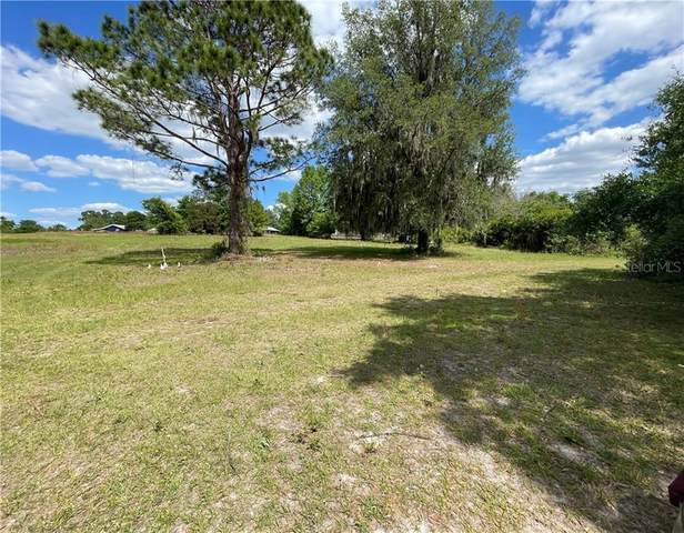 SE 145TH Street, Summerfield, FL 34491 (MLS #G5040548) :: Southern Associates Realty LLC