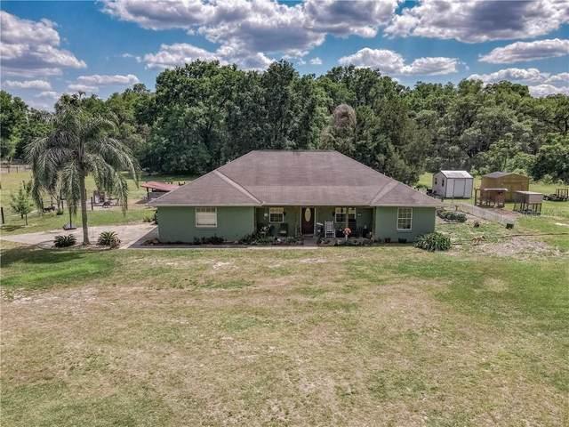 1040 Se 162Nd Pl, Summerfield, FL 34491 (MLS #G5040665) :: The Kardosh Team