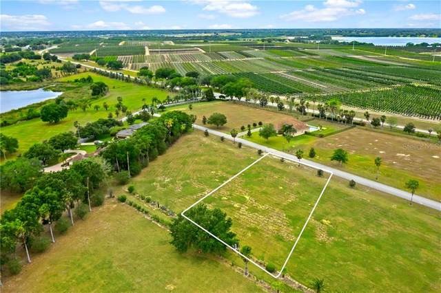 7416 Jasmine Street, Groveland, FL 34736 (MLS #G5040669) :: Premier Home Experts