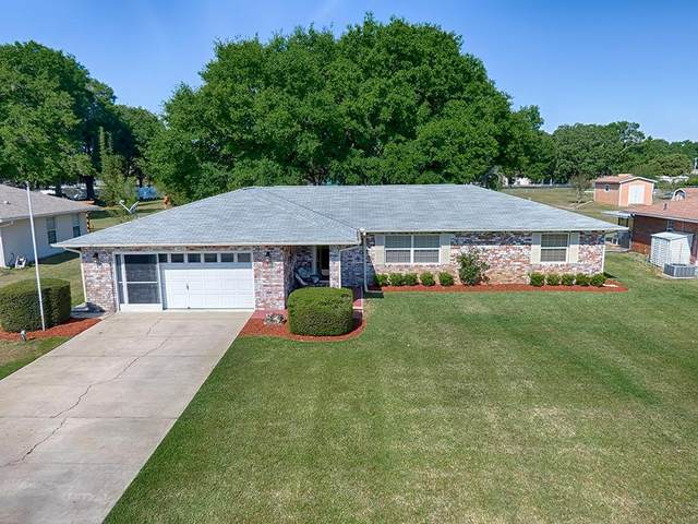 14480 Se 96 Terrace, Summerfield, FL 34491 (MLS #G5040725) :: Dalton Wade Real Estate Group