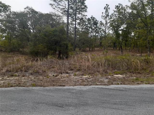 00 SW Sunshine Ridge Road, Dunnellon, FL 34431 (MLS #G5040776) :: The Lersch Group